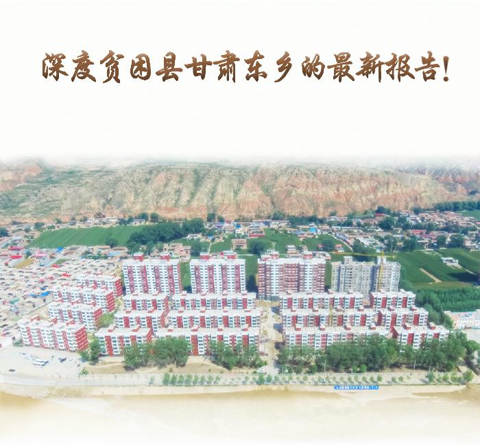 图解|深度贫困县甘肃东乡的最新报告