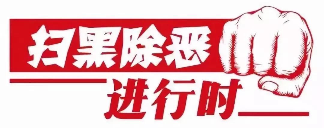 陇南市委市澳门银河娱乐官方网址扫黑除恶专项斗争推进会议召开