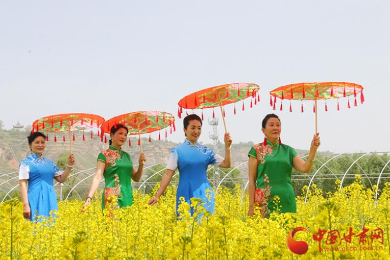 """临夏折桥:以花为媒带动乡村旅游 """"花海经济""""助力脱贫攻坚"""