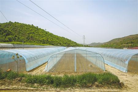 合力共拓小康路 ——中国化学工程集团公司在庆阳开展帮扶工作纪实