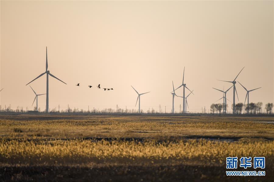 (北京世园会·图文互动)(2)吉林分区域推进生态保护 让绿色发展底气更足