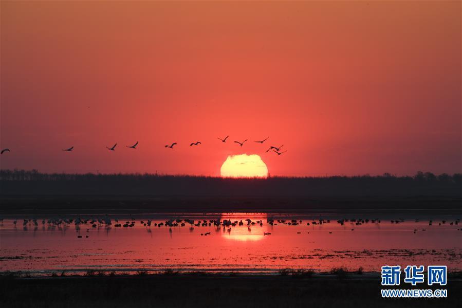 (北京世园会·图文互动)(3)吉林分区域推进生态保护 让绿色发展底气更足
