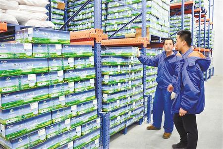 """升级理念""""发羊财"""" ——庆阳环县发展草畜产业侧记"""