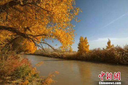 资料图:疏勒河流域景色。疏勒河流域水资源局供图