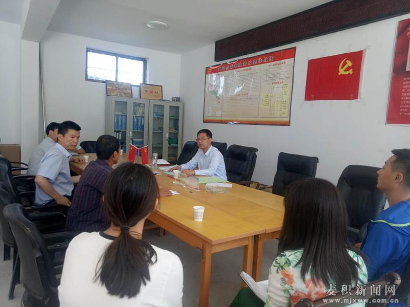杜峥嵘督查指导伯阳镇、元龙镇脱贫攻坚及基层党建工作