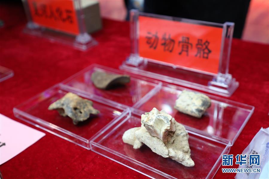 (图文互动)(7)考古证实:甘肃白石崖溶洞是青藏高原目前已知最早考古遗址