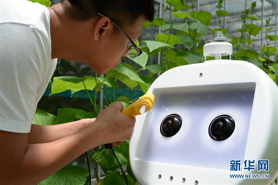 """(图文互动)(2)迈向""""无人农场""""——福建发布人工智能农业机器人"""