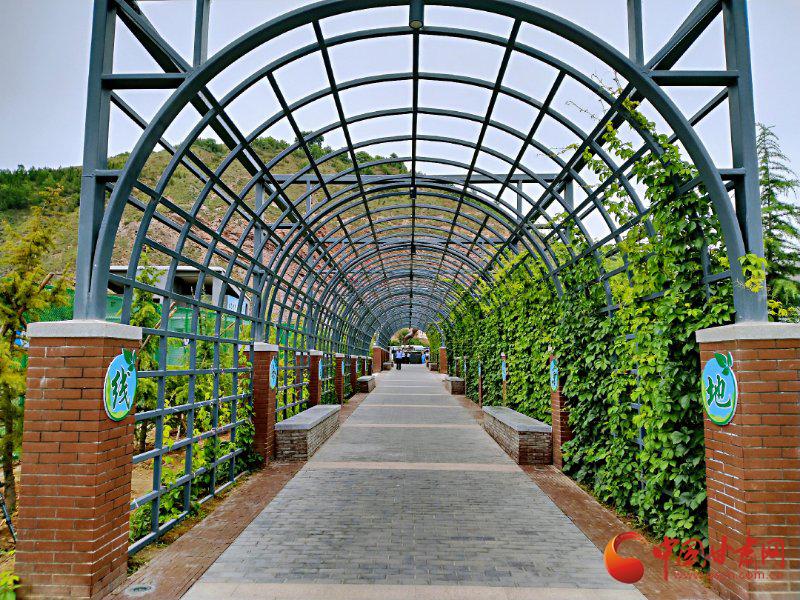 【甘肃生态环保行】探寻兰州城市饮用水源头 涵养林带筑起绿色屏障守护生命之源
