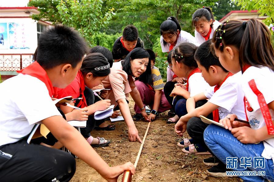 (教育)(3)河北乐亭:农耕教育进校园