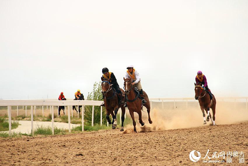 内蒙古国际马术节