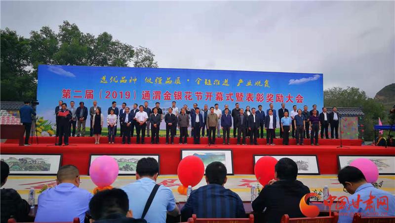 第二届通渭金银花节开幕 1386户农户喜领500万分红