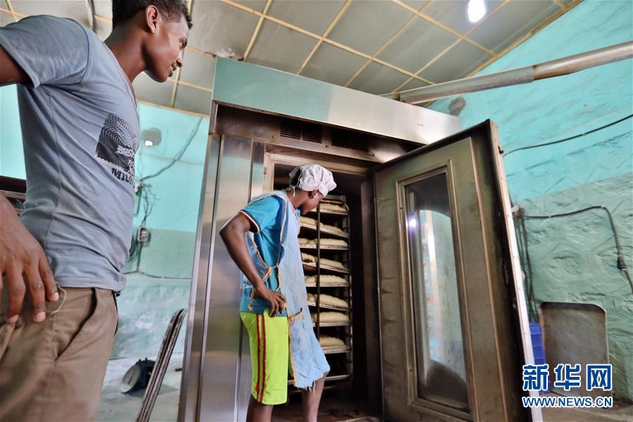 (国际)(4)中国企业助力埃塞俄比亚电网升级改造