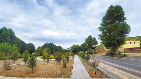 绿色发展新名片——武威天祝县推进生态环境建设见闻