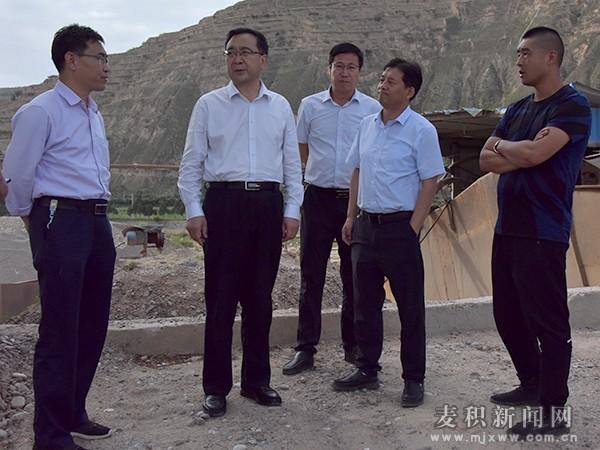 张智明带队督查新阳镇砂场突出问题整改情况