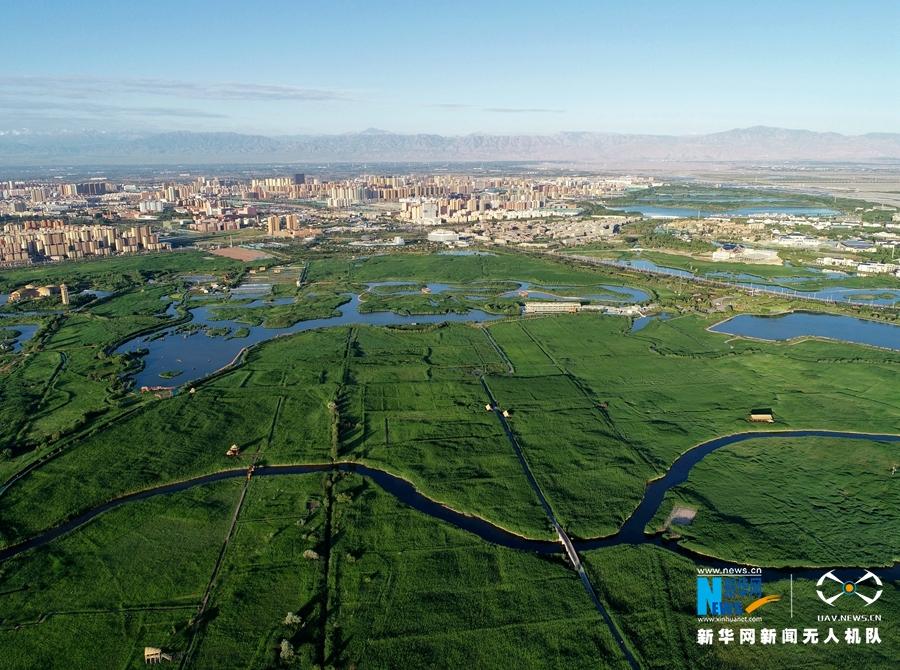 空中瞰甘肃张掖湿地 绿意水韵秀美如画