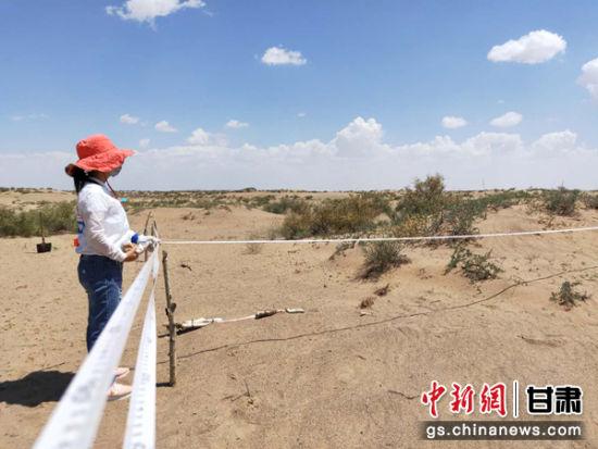 武威沙漠边缘进退观测实地观测为生态恢复提供科学依据