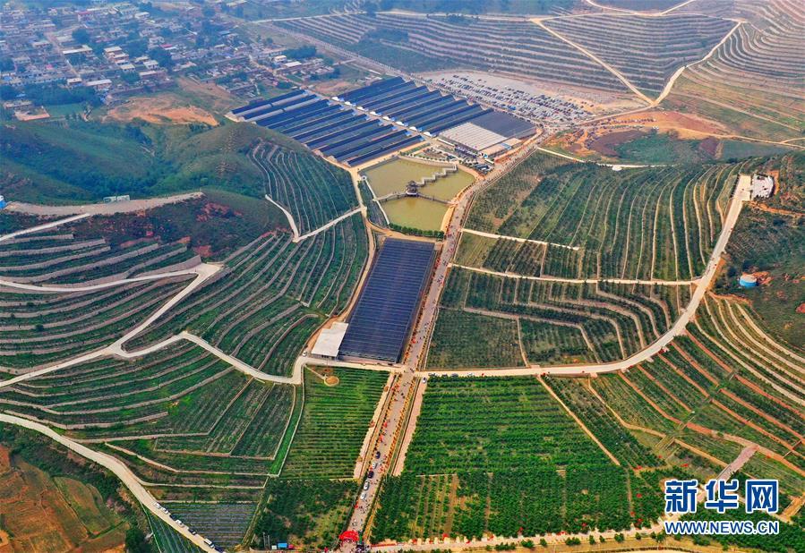 (经济)(1)河北滦州:荒山变身富农生态园