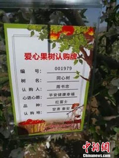 黄土高坡爱心认购苹果树 浙江台州助力甘肃小庄村脱贫