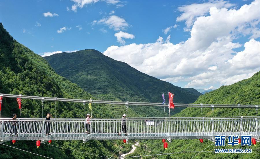 甘肃宕昌:森林公园里享清凉