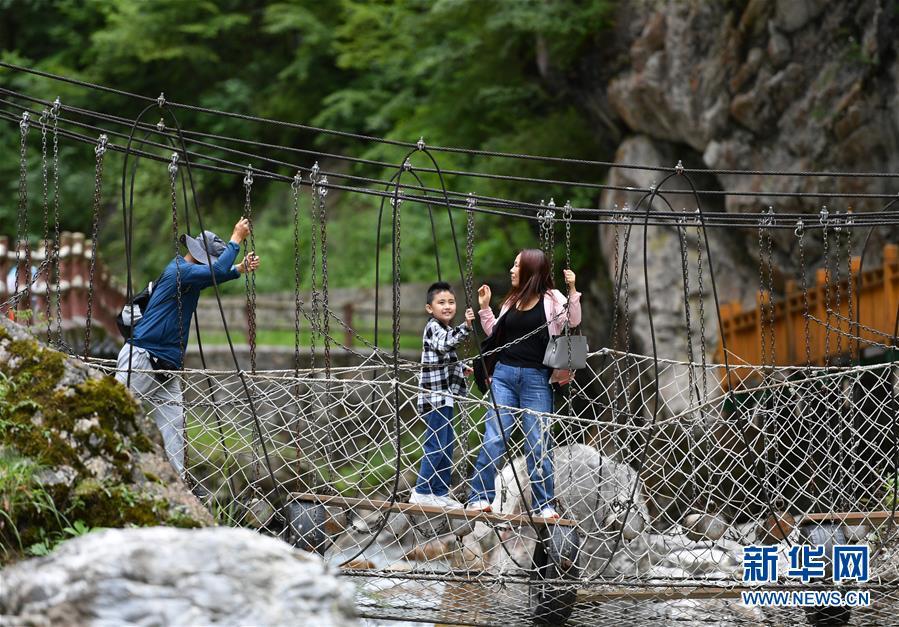 (社会)(2)甘肃宕昌:森林公园里享清凉