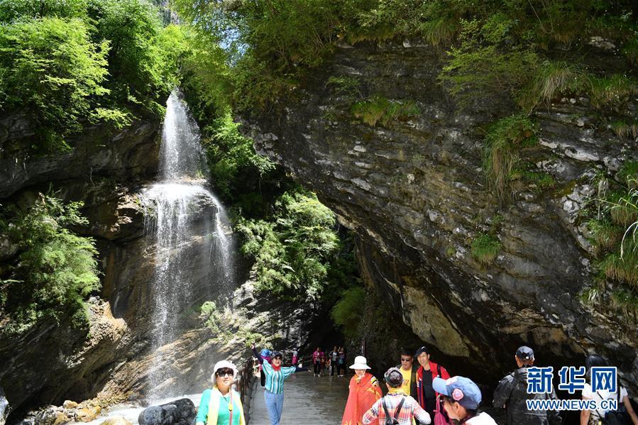 (社会)(4)甘肃宕昌:森林公园里享清凉