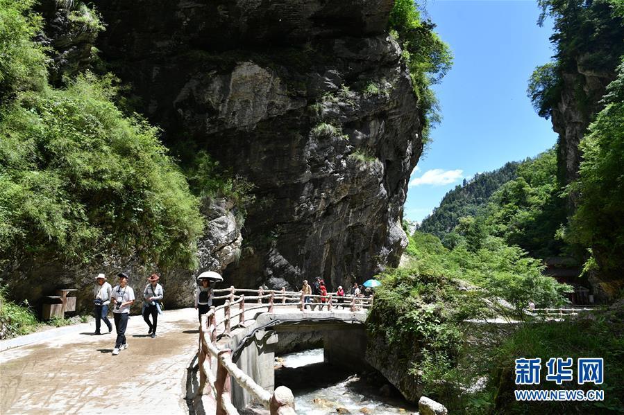 (社会)(5)甘肃宕昌:森林公园里享清凉