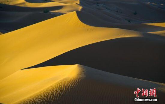 """甘肃库木塔格大沙漠犹如""""金色海洋"""""""
