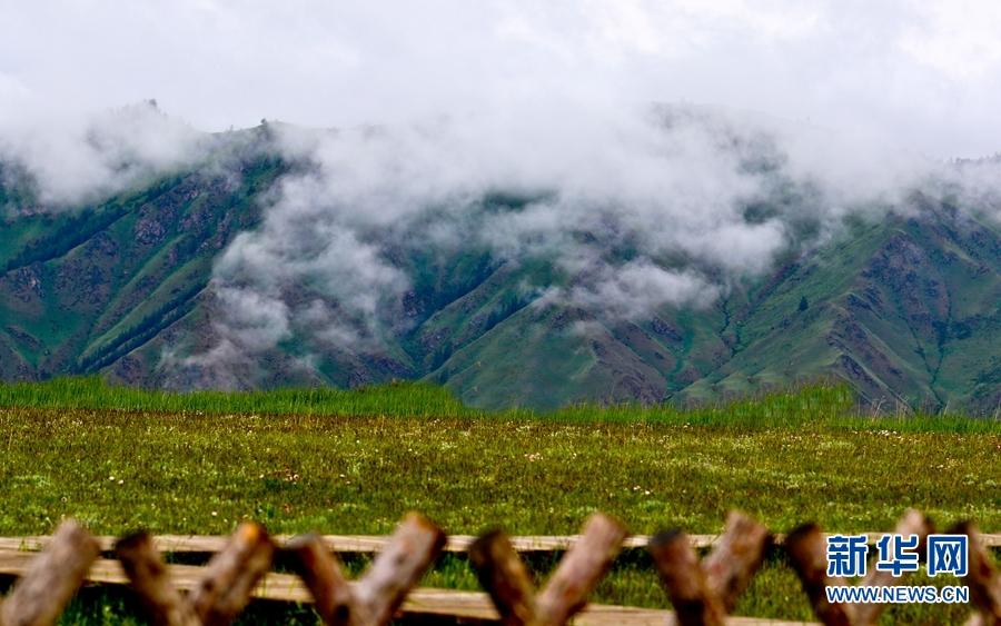 甘肃肃南:烟雨祁连山