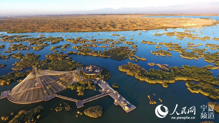 探访湿地魅力