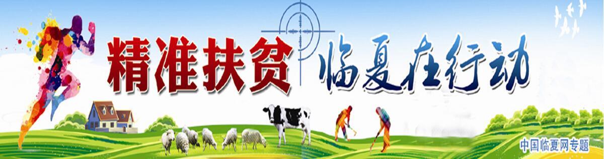 【甘肃五个一百网络正能量专题·系列展播(25)】精准扶贫 临夏在行动