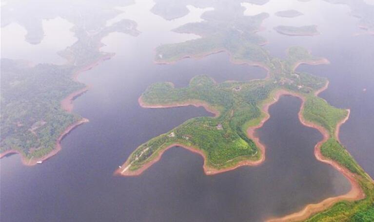 臭水变清水催生一批生态产业——重庆最大人工湖的绿色蝶变