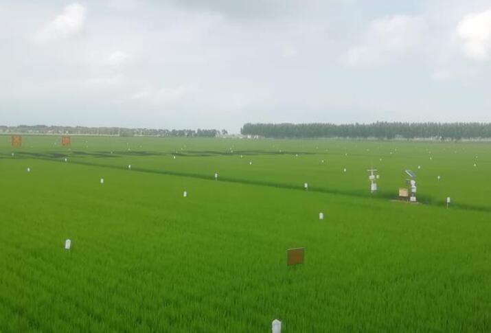 """从""""靠天吃饭""""到""""看天管理""""——黑龙江创新气象为农服务体系观察"""