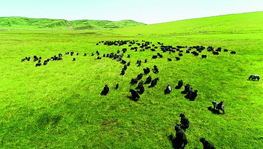 定西岷县狼渡滩:让自然感动心灵