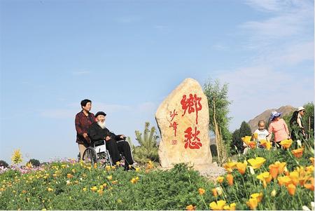 甘肃乡村美景醉游人(组图)