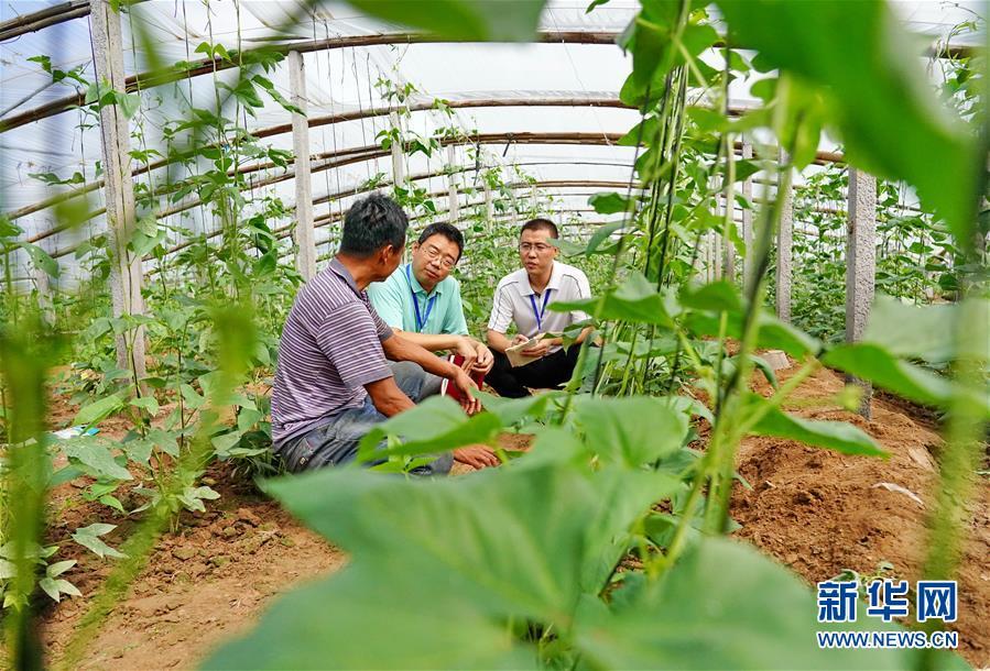 (社会)(2)河北新河:严肃整治群众身边的腐败和作风问题