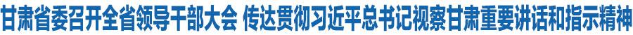 甘肃省委召开全省领导干部大会 传达贯彻习近平总书记视察甘肃重要讲话和指示精神