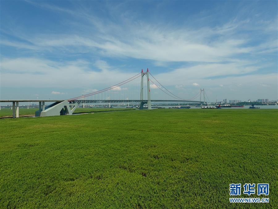 (新华全媒头条·图文互动)(7)为了美丽的绿水青山——习近平总书记考察生态文明建设回访