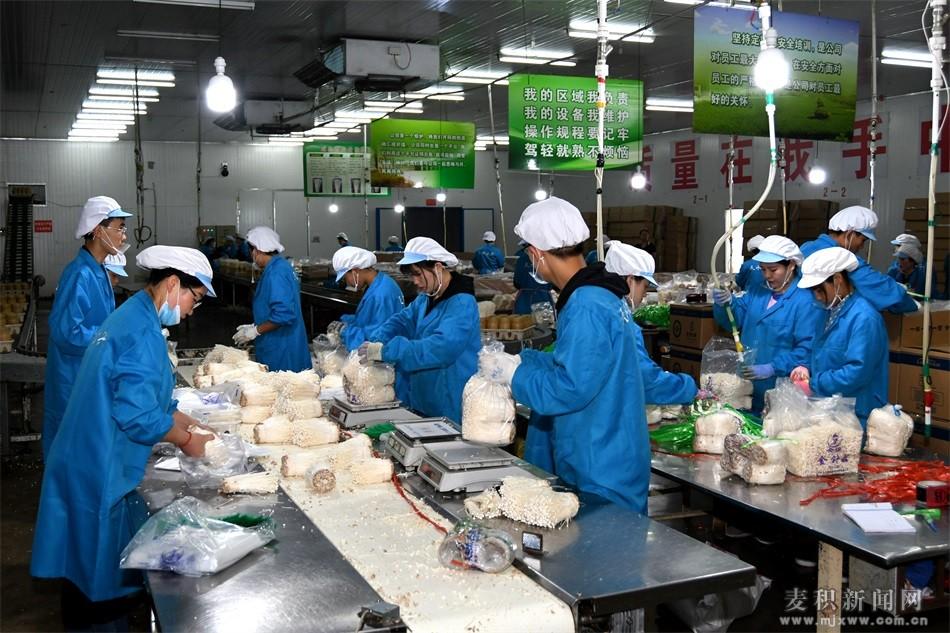 麦积区:建巾帼扶贫车间 帮妇女就业脱贫