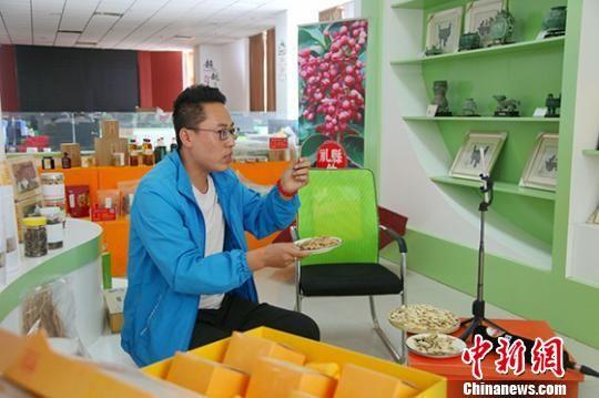 图为赵佩的同事刘钦法正在通过直播推介礼县黄芪。 钟欣 摄