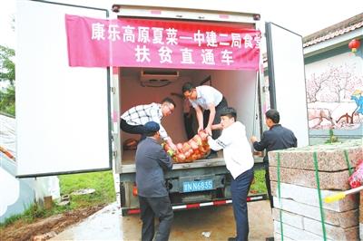 """临夏州康乐县解决蔬菜""""销售难""""问题"""
