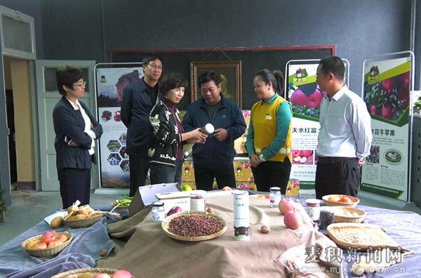 天津市西青区委统战部赴麦积区对接脱贫攻坚对口帮扶工作