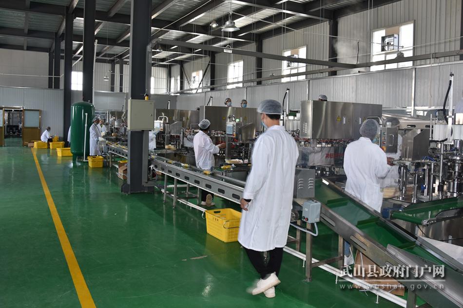 甘肃第一个水果玉米加工厂在武山建成投产