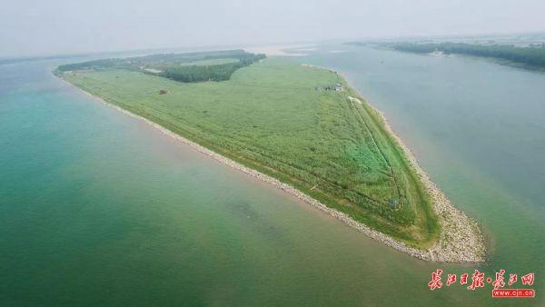 """这段长江,有生态涵养区给鱼""""让路"""""""