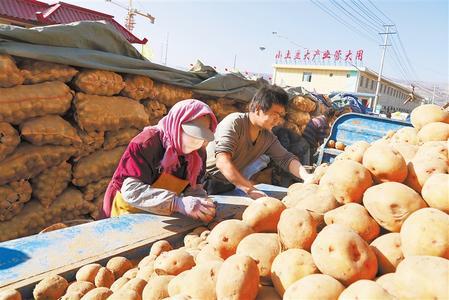 """""""洋芋蛋""""的华丽""""三级跳""""——定西市大力发展马铃薯产业纪实"""