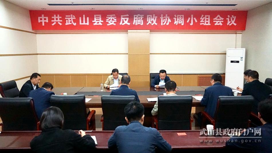 武山县召开县委反腐败协调小组工作推进会议