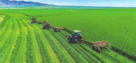 金昌永昌县:推动农业高质量发展