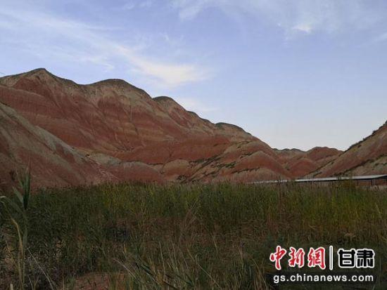 丹霞山下,芦苇随风摇曳,相映成趣。