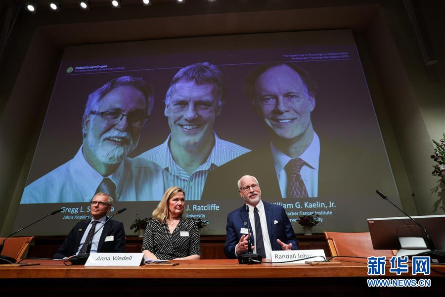 (国际)(1)三名科学家分享2019年诺贝尔生理学或医学奖