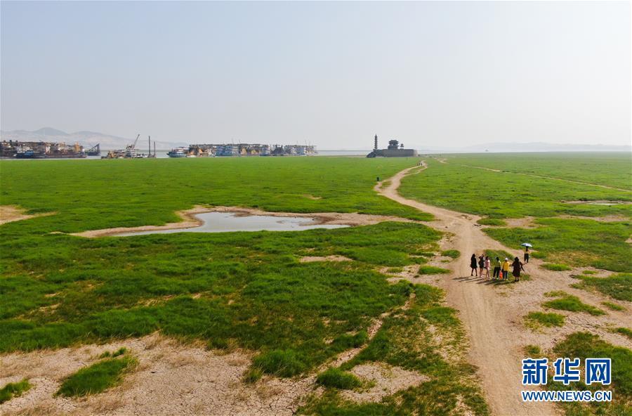 (环境)(4)鄱阳湖进入枯水期