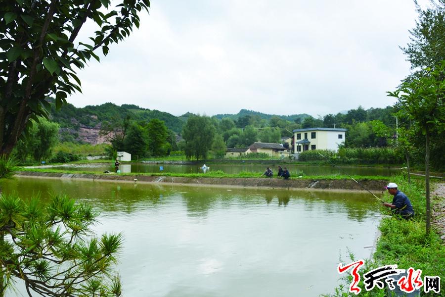 """【壮丽70年】麦积区红崖村:从""""牛粪村""""到""""网红村"""""""